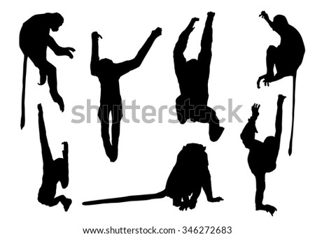collection of silhouette monkey set 2, animal vector illustration