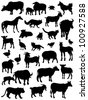Collection of silhouettes of animals - stock vector