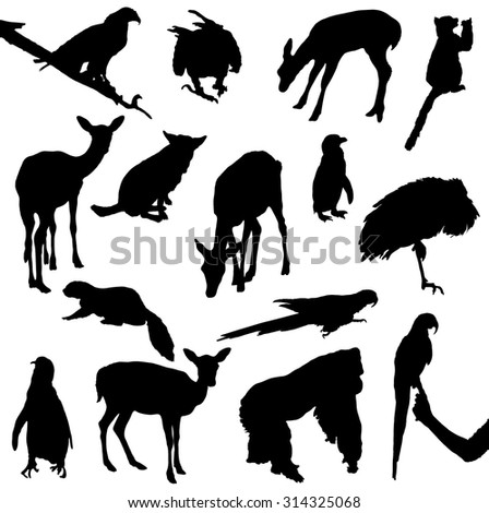 Collection of silhouettes of animals and birds - stock vector