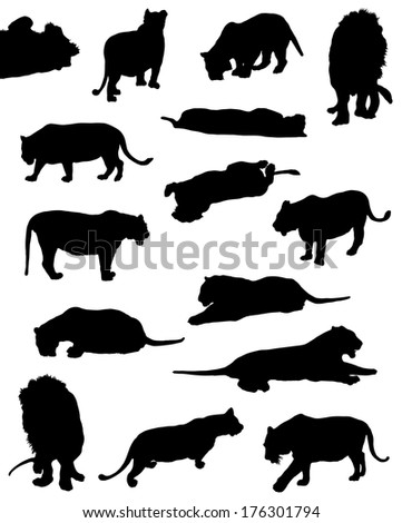 Collection of silhouettes of lions and tigers - stock vector