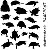 Collection of silhouettes of turtles - stock photo