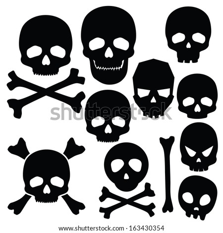 Collection of skulls isolated on white (vector illustration) - stock vector