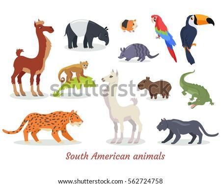 Cartoon+armadillo on Zoo Animal Fine Motor Activity