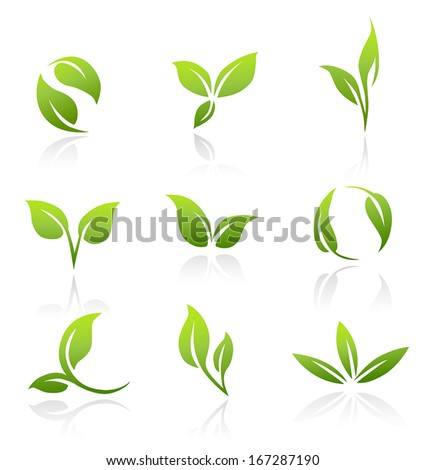 Collection of vector icons of green leaves. - stock vector