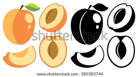 Collection of vector whole and cut apricot fruits in color and black and white silhouettes - stock vector