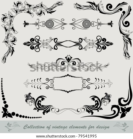 collection of vintage elements for design - stock vector