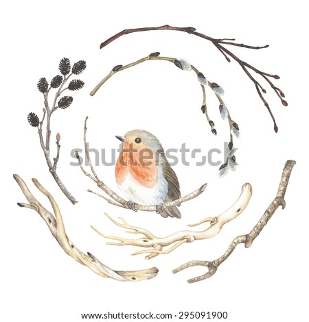 Collection of watercolor branches and bird Robin (Erithacus rubecula), vector illustration in vintage style. - stock vector
