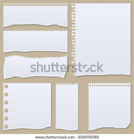 collection of white torn paper. Vector illustration - stock vector