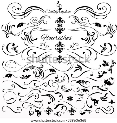 Collection or set of vintage styled calligraphic elements or flourishes - stock vector