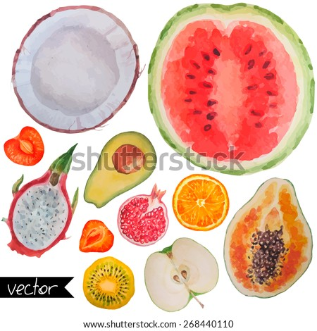 Collection set of fresh ripe fruits berries and and exotic fruits close up sign objects isolated on white background. Watercolor painting - stock vector