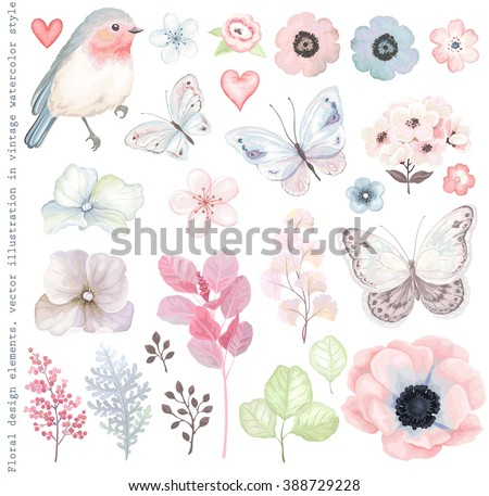 Collection vector flowers, Robin bird, butterflies, branches and leaves in vintage watercolor style. - stock vector