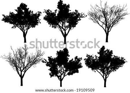 collection vector trees + fall tree - stock vector