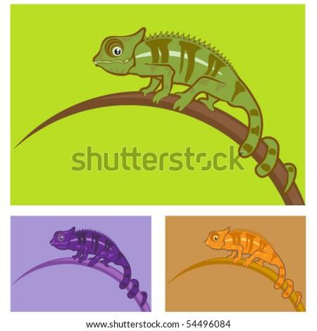 Color Chameleon vector Illustration - stock vector