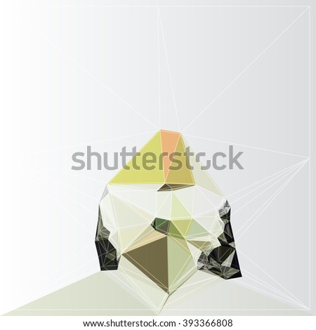 color design vector background graphic illustration polygon
