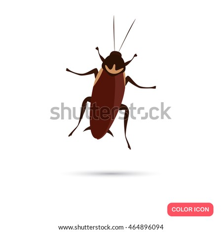 Color flat cockroach icon
