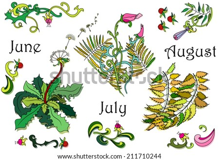 Color flower elements collection hand drawn vector for invitation, greeting, calendar... - stock vector