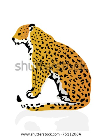 Color illustration of leopard - stock vector