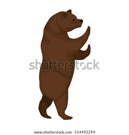Standing grizzly bear illustration