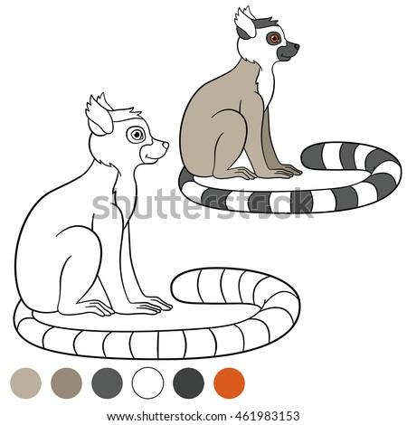 color me lemur little cute lemur sits and smiles