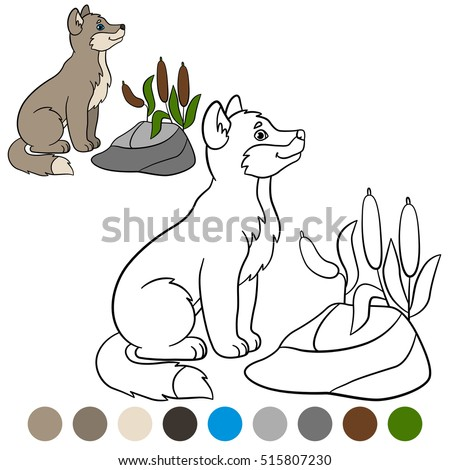 Color Me Wolf Little Cute Baby Sits And Smiles