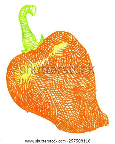 color vector illustration pepper on white background
