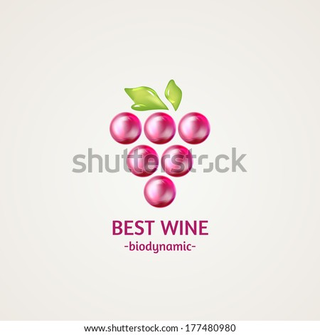 Colored glossy and shiny winery sphere icon. Vector illustration - stock vector