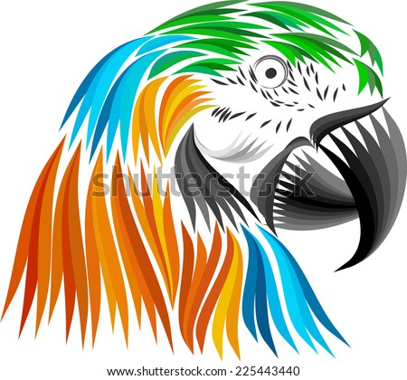 colored parrot head - stock vector