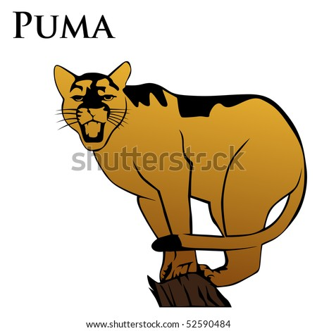 colored puma vector illustration with text - stock vector
