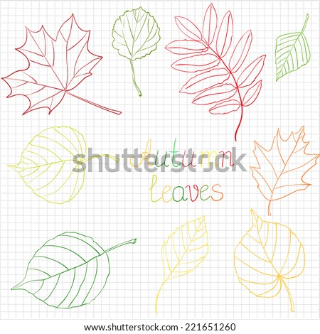 Colorful Autumn Leaves Doodles. Vector Illustration. Hand-drawn Style. - stock vector