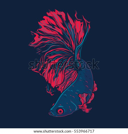 Rooster fish stock images royalty free images vectors for Siamese fighting fish crossword