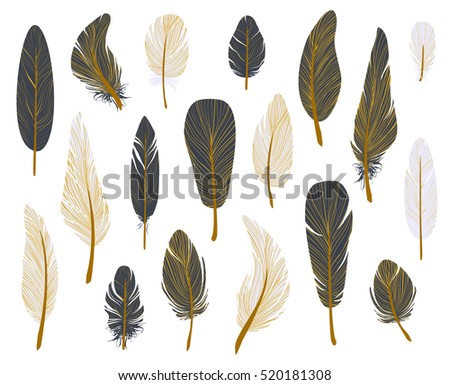 Colorful bird feathers, gold ink set, painted design. Hand drawn editable elements, realistic style, vector illustration. Ethnic Colored feathers, isolated on background,sketched collection.