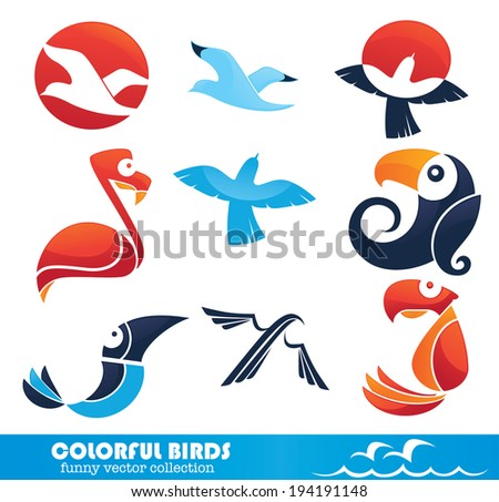 colorful birds, vector collection