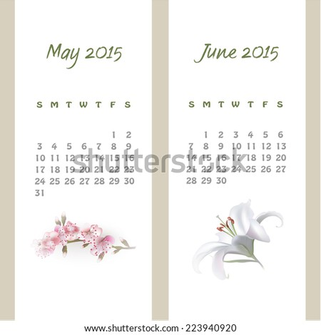 Colorful calendar for May-June 2015 with seasonal design elements. Vector illustration
