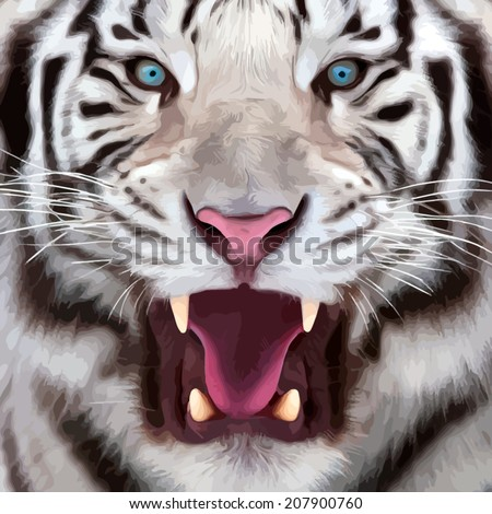 Colorful closeup portrait of a white bengal tiger with open chaps. Oil painting style. The biggest cat. Wild beauty of the most dangerous and mighty beast. Vector illustration.