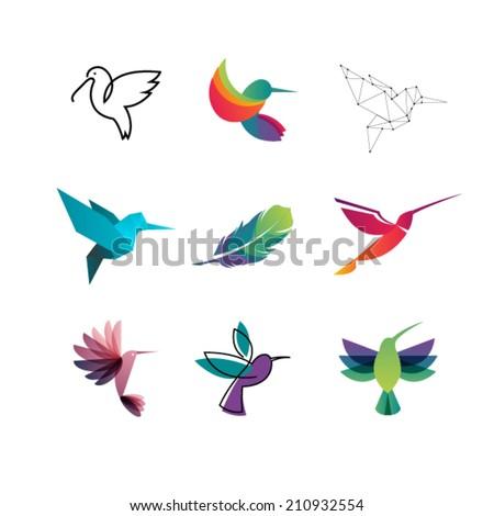 Colorful Colibri. Hummingbirds - stock vector