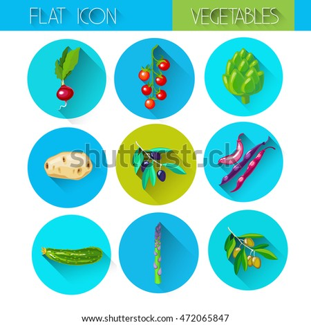Colorful Collection Vegetable Icon Set Flat Vector Illustration