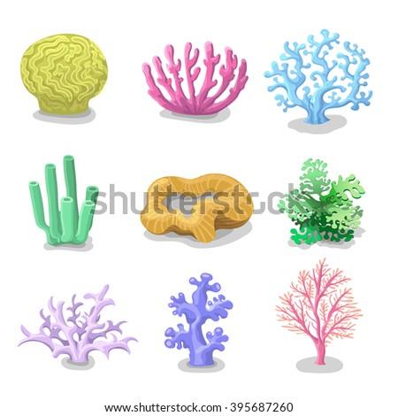 Colorful corals, Reef nature marine  Vector underwater flora, fauna. - stock vector