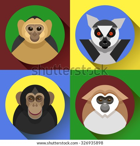 Colorful flat vector monkey images in set, a symbol of the 2016 new year, various primates,  marmoset, lemur, chimpanzees - stock vector