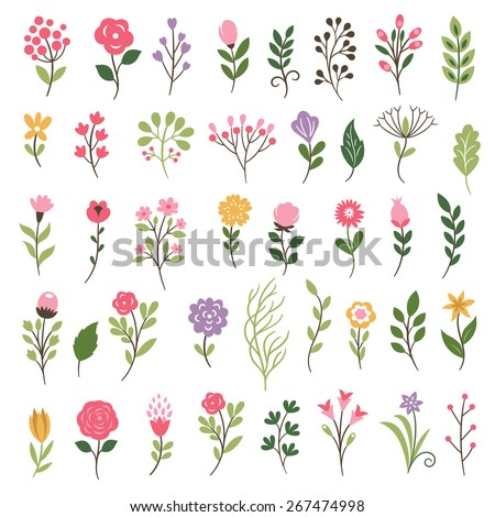 Colorful floral collection with   flowers and leaves - stock vector