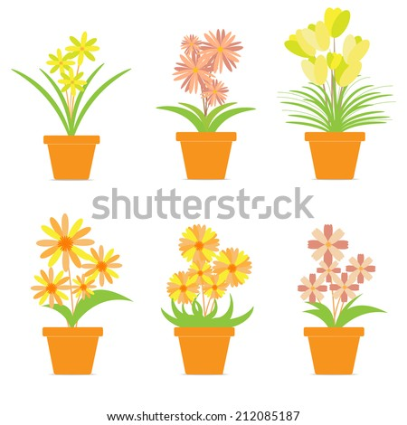 Colorful Flowers in Pots Isolated on White Background.