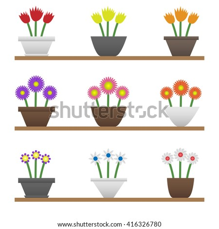 Colorful flowers in pots. Spring and summer flowers. Eco and Bio concept