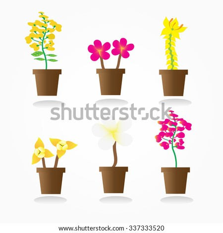 colorful flowers in pots Vector