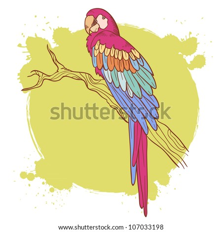 Colorful hand drawn ara parrot sitting on a tree brunch isolated on a grunge background - stock vector