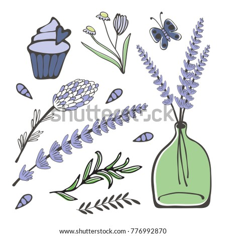 Colorful hand drawn collection of herbs