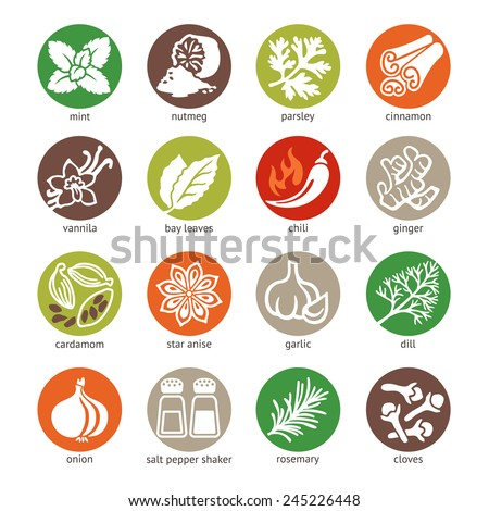 Colorful icon set - spices, condiments and herbs  - stock vector