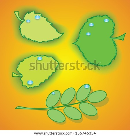 colorful illustration with set of leaves for your design