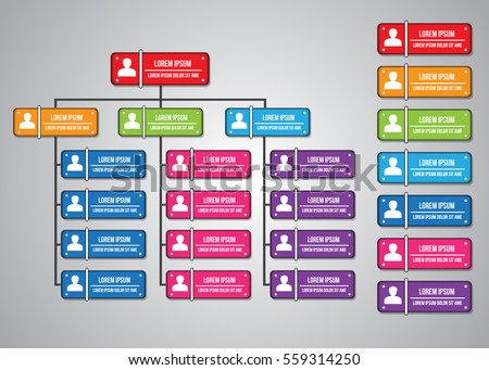 Colorful Rectangle Organization Chart Infographics People Stock