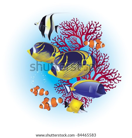 Colorful tropical fish on a coral reef - stock vector