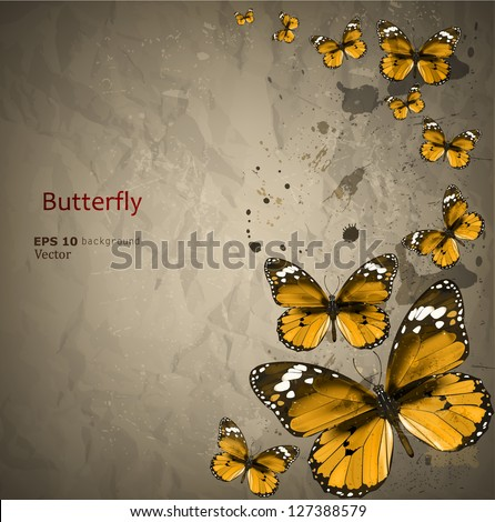 Colorful Vintage Background Butterfly Grunge Paper Stock ...