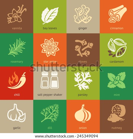 Colorful web icon set - spices, condiments and herbs  - stock vector